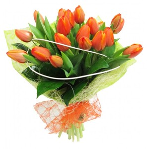 Ramo Holland Tulipanes